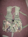 Woodland Camouflage Molle Vest