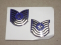 U.S. Air Force Master Sergeant Rank/Insignia (stock no. 8455-01-