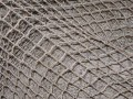 10′ x 10′ Fish Net