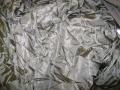 U.S. Military 65′ Cargo Parachute