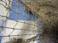 5′ x 10′ Fish Net